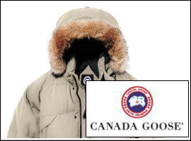 カナダグースとは